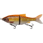 3D Roach Shine Glider PHP 13.5cm/29gr SS06 Gold Fish