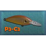 Model Performer P3.5